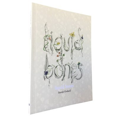 Liquid Bones by Sarah Godsell (Impepho Press)