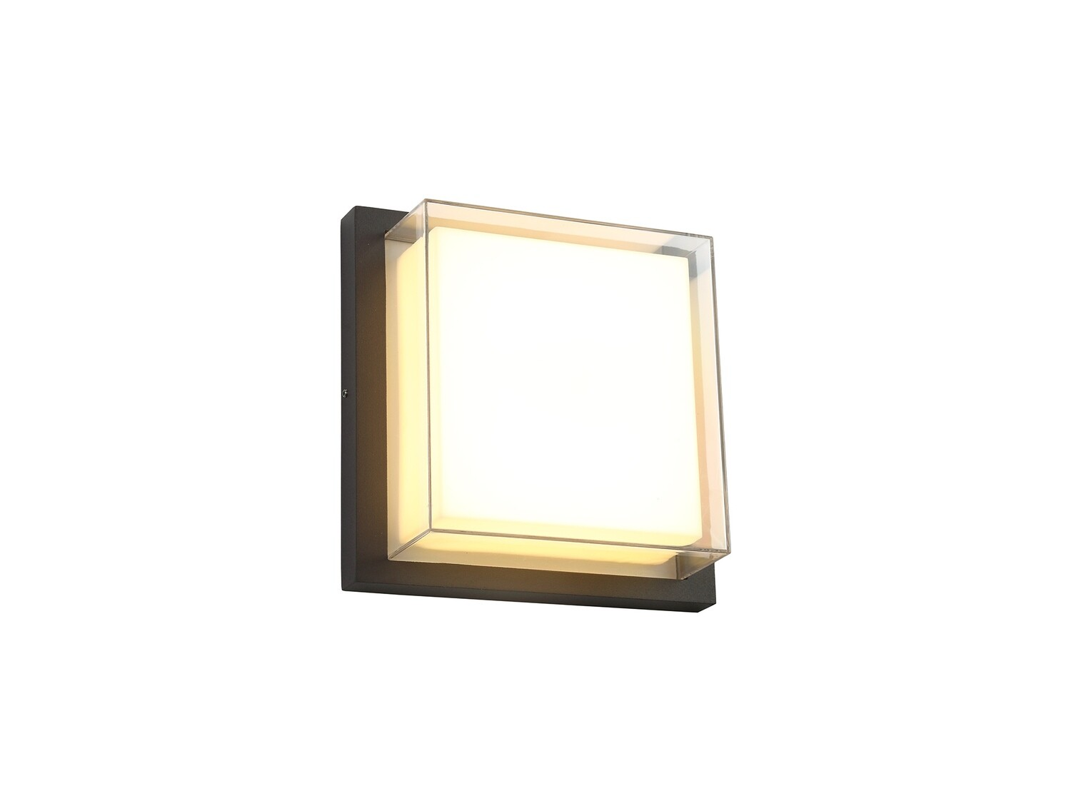 Dani Wall Lamp, 1 x 16W LED, 3000K, IP65, Anthracite/Opal/Clear PC