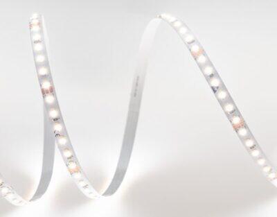 TSL DUAL LED strip light TUNEABLE WHITE 24V 16.4W/m 240 LED's/m IP20