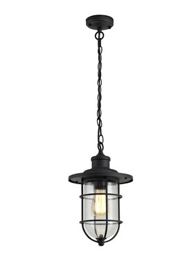 Gara Pendant, 1 x E27, Black/Gold With Seeded Clear Glass, IP54