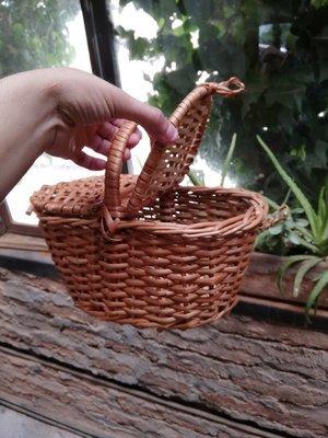 Canasto mini picnic