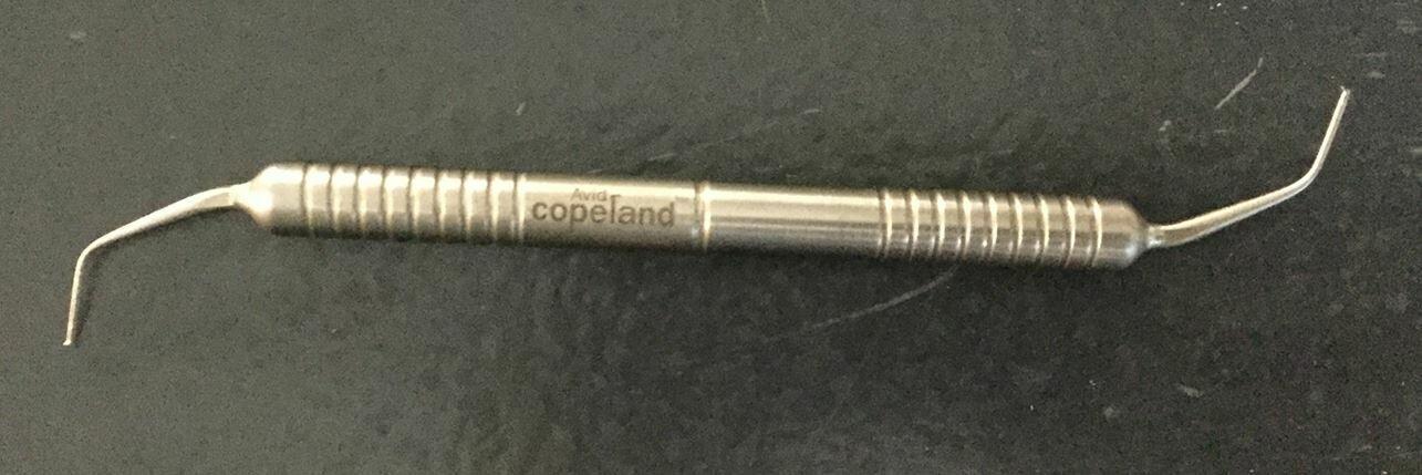 Avid Copeland