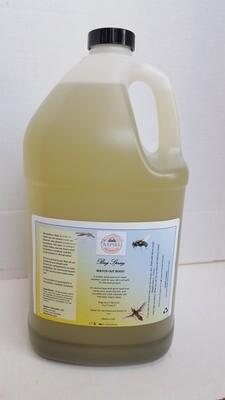 Bug Spray, Plastic Refill Jug, 128 oz (1 gal)