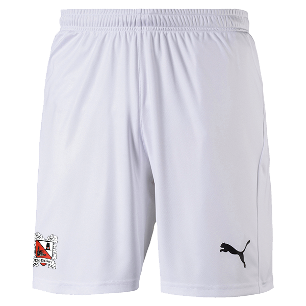 Puma Away Shorts 20/21 Adult