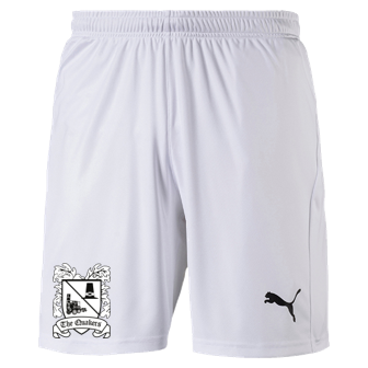 Puma Away Shorts 20/21 Adult