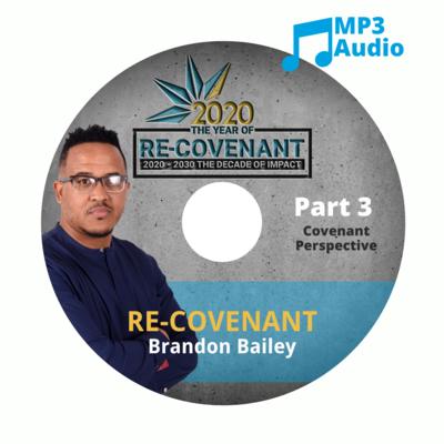 Re-Covenant Part 3: Covenant Perspective