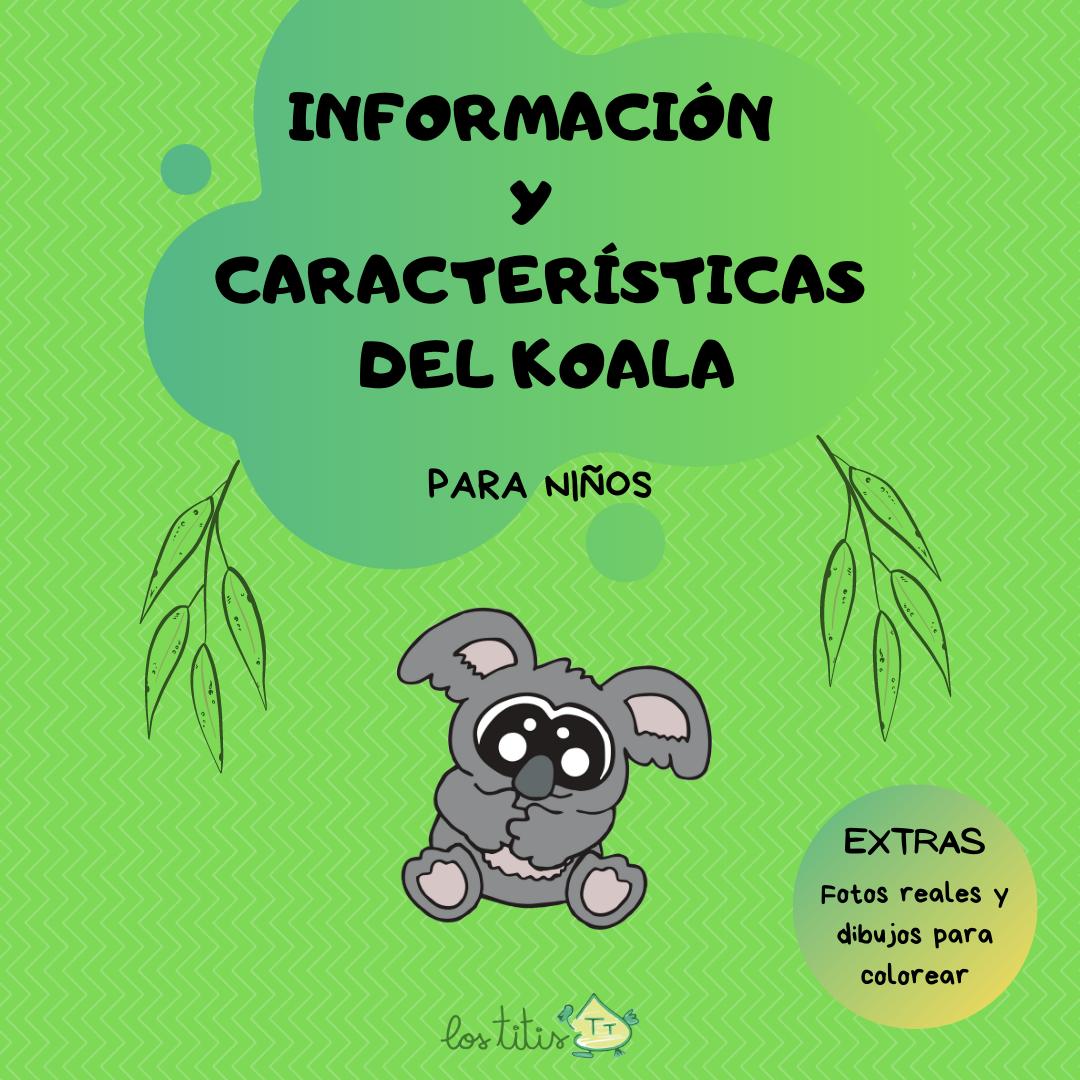 Información y Características del Koala