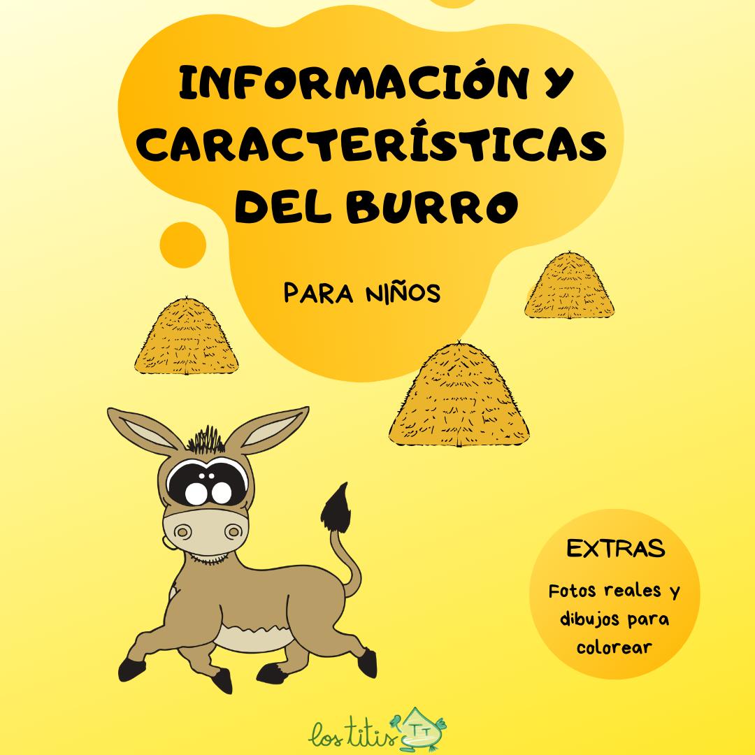 Información y Características del Burro