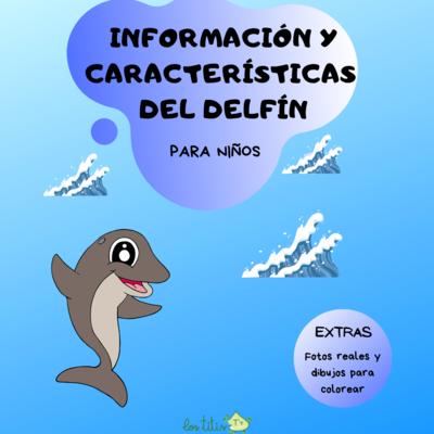 Información y Características del Delfín