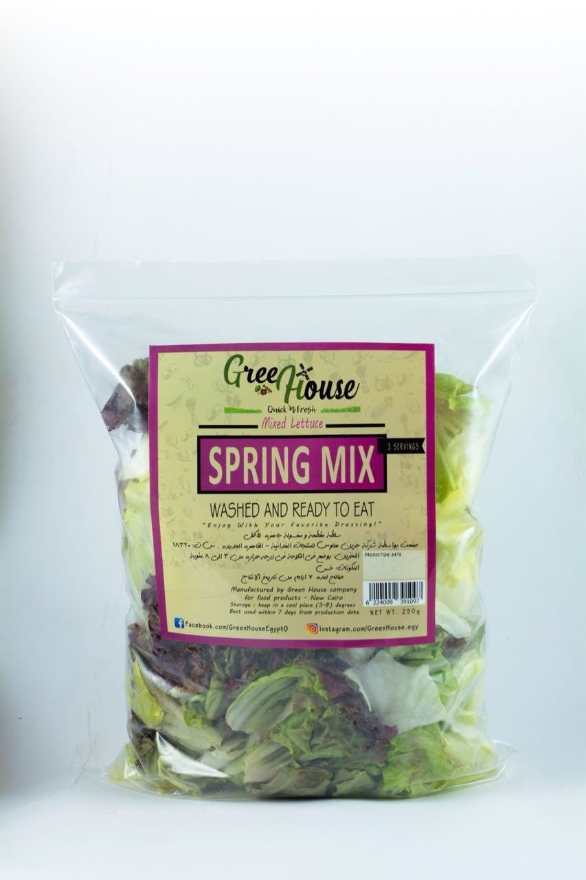 Spring Salad Mix خلطة سلطة الربيع