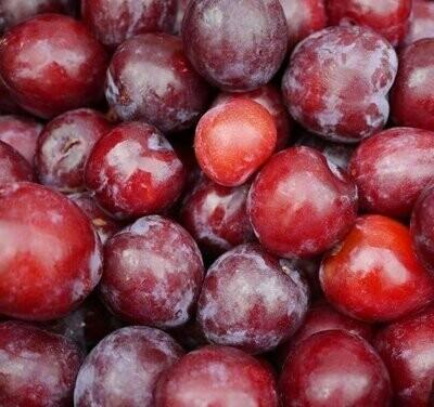 Red plums (1kg) برقوق أحمر