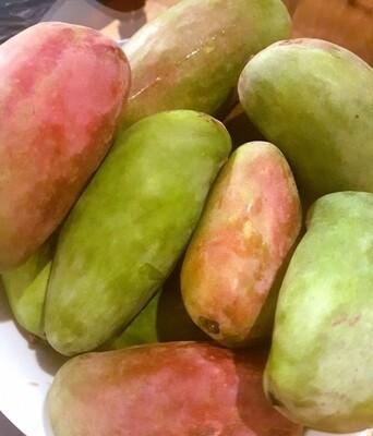 Siddiqa mango (1 kg) مانجو صديقة