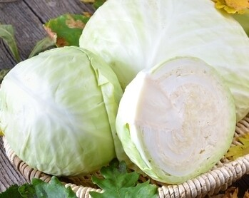 White Cabbage (per head) (كرنب ابيض سلطة (راس