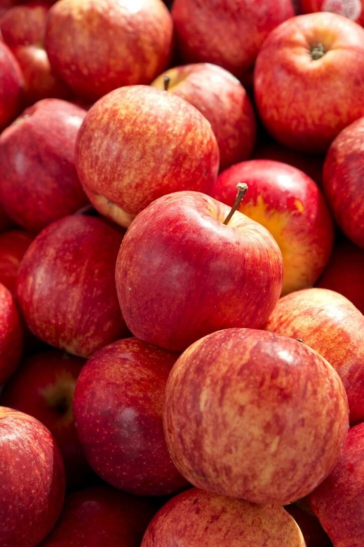 Gala apples - imported (1 kg) تفاح سكري - مستورد