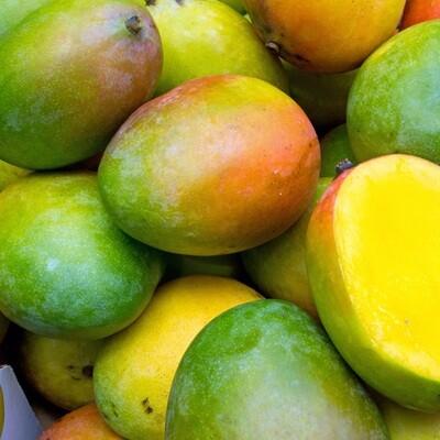 Alphonse mango (1kg) مانجو الفونس