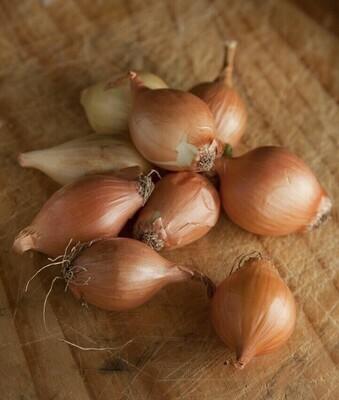 Yellow Baby Onions (500g) بصل اصفر صغير