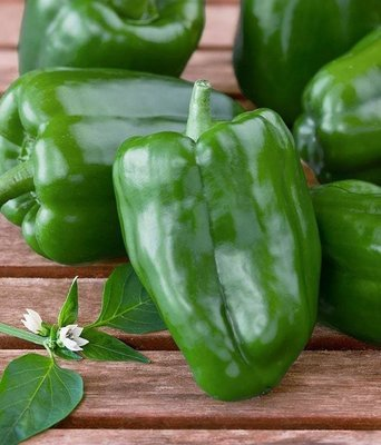 Green bell peppers (1 kg) فلفل رومي