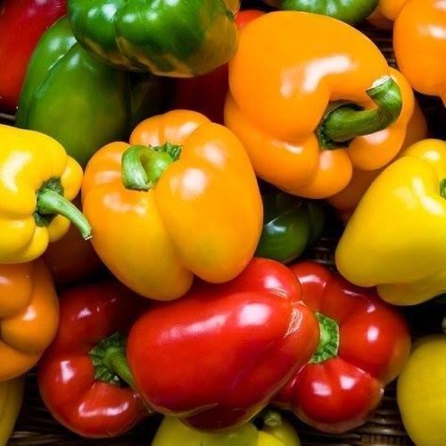 Mixed bell peppers (1kg) فلفل رومي مشكل