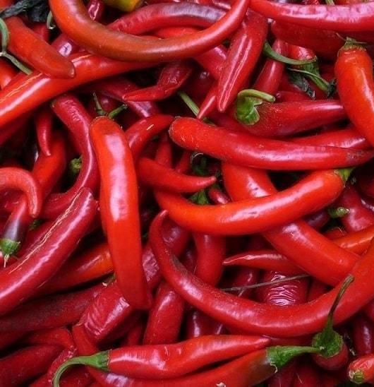 Red hot pepper (250 gm) فلفل حامي أحمر