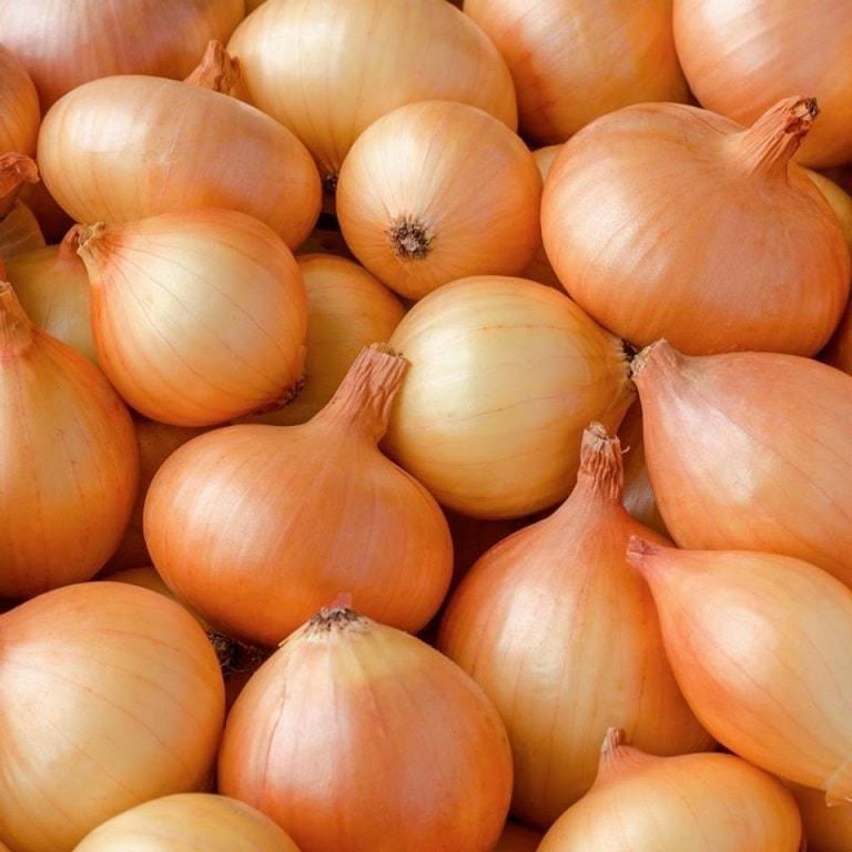 White Onions (1 kg) بصل ابيض