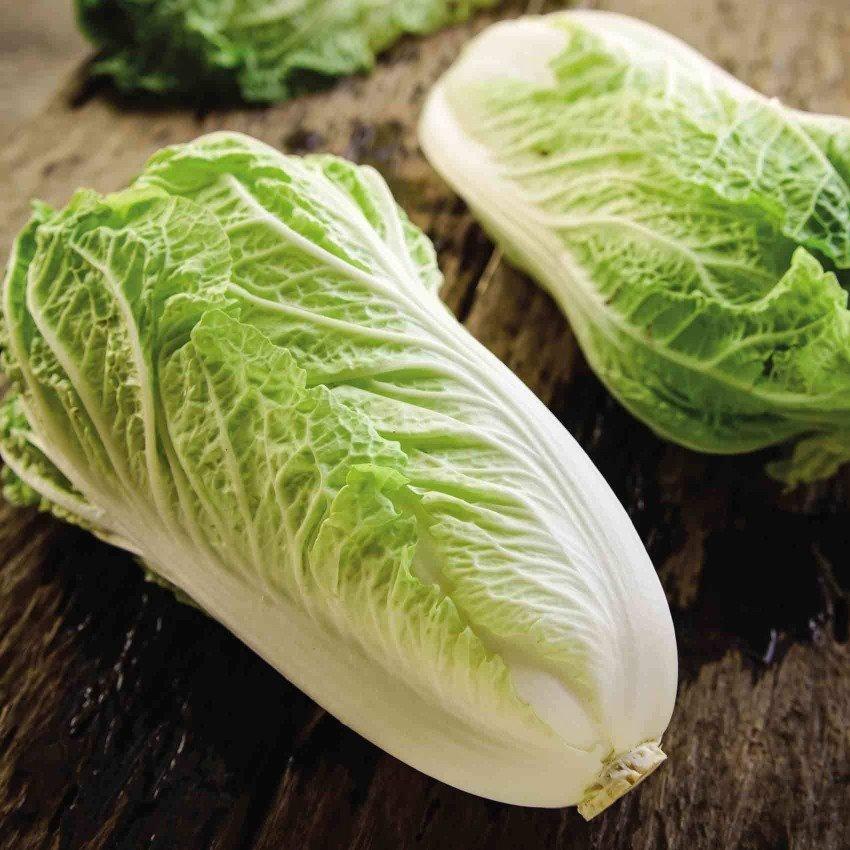 Chinese cabbage (1 piece) خس صيني