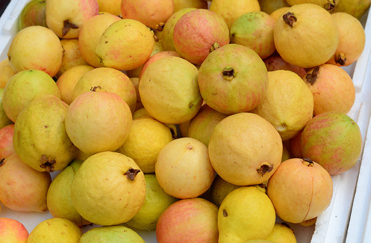 Guava (1 kg) جوافة