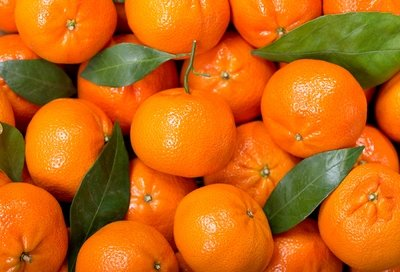 Tangerines (1 kg) يوسفي