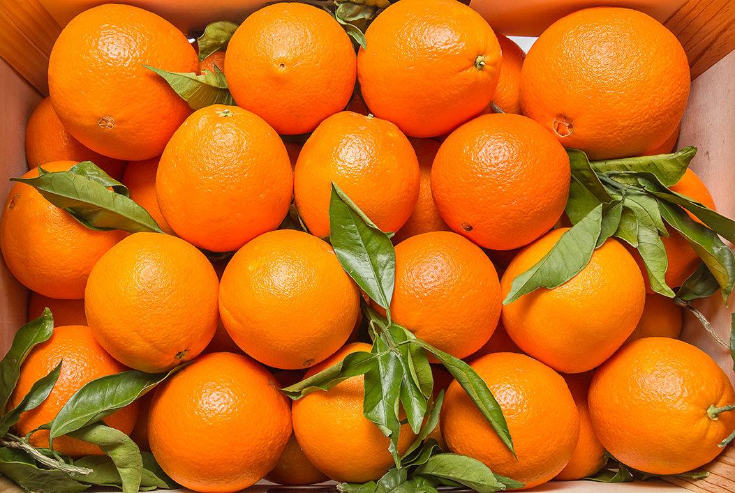 Valencia Oranges (1 kg) برتقال صيفي