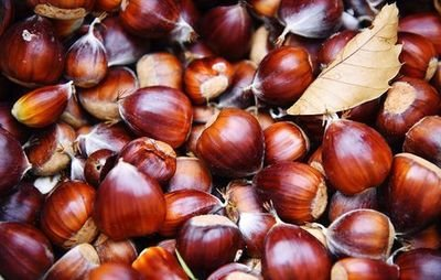 Chestnuts (500 g) ابو فروه