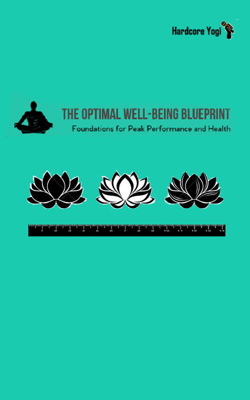 The Optimal Well-Being Blueprint: Foundations of health and peak performance
