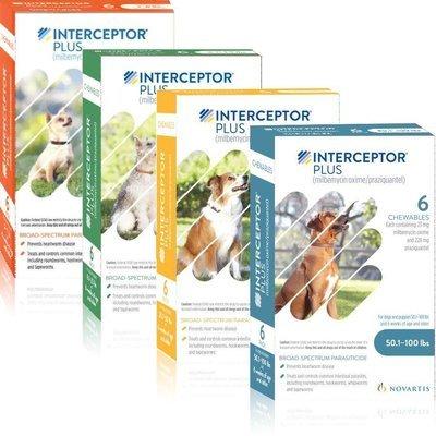 Interceptor Plus, 6 month supply