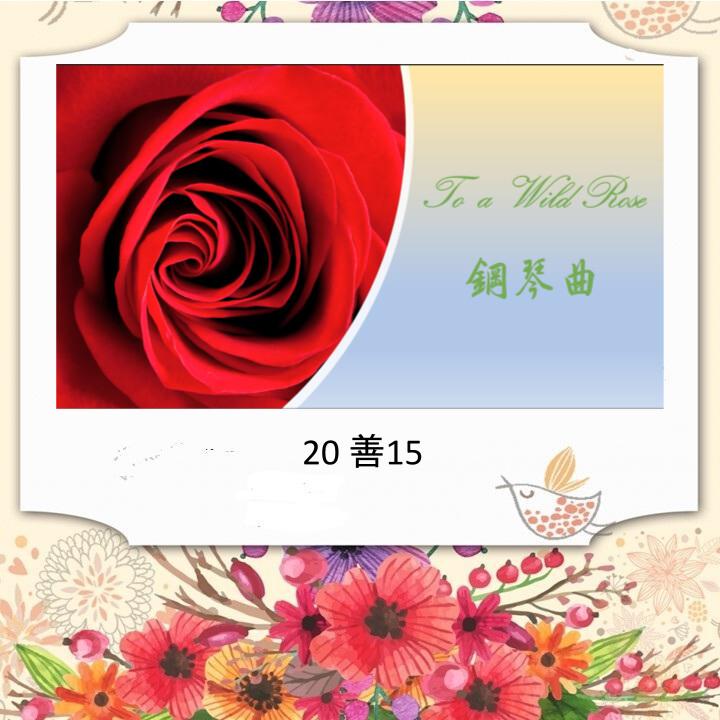 鋼琴演奏 :To A Wild Rose