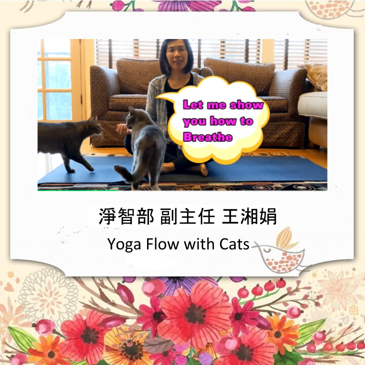 @Home Yoga