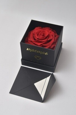 ForeverFiora Cube (Rose)