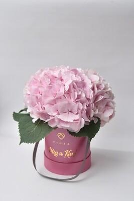 Small Bucket Hydrangeas (Seasonal; Inquire first re. availability)