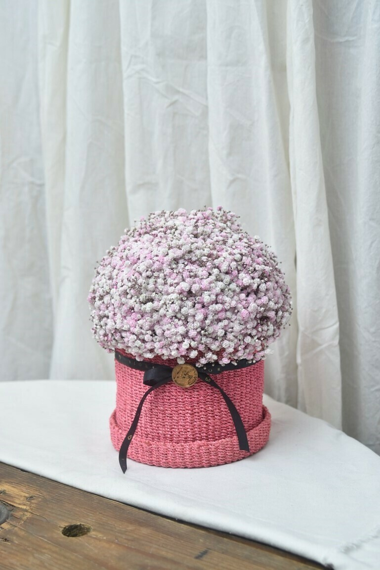 "Flower Basket (""Cotton Candy"")"