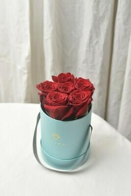 Small Bucket (6 Roses)
