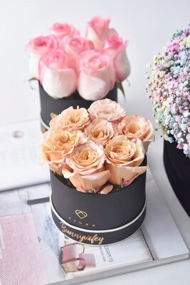 Small Box (7 Fresh Roses)