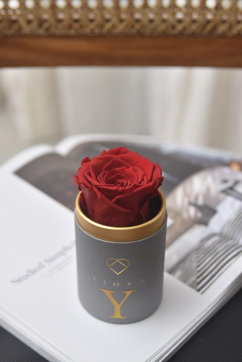 ForeverFiora Single Preserved Rose (Regular Color)