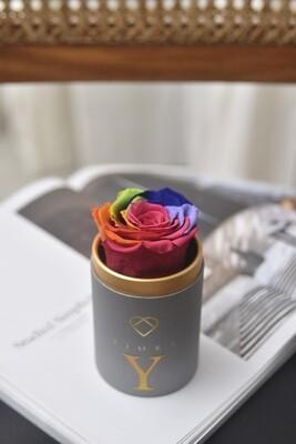 ForeverFiora (Rainbow Color)