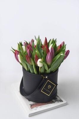 Lusso Petito: Tulips