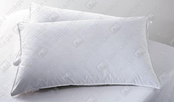 Kingtex Ramesses Twin Pack Pillows
