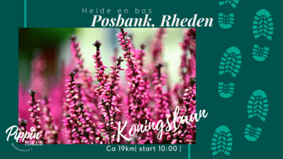 Zo. 22 aug '21 | Posbank, Rheden | ca. 19 km