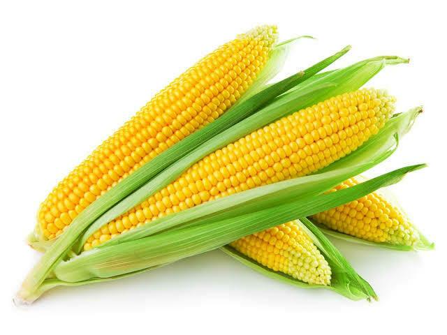 Corn Sweet Cob