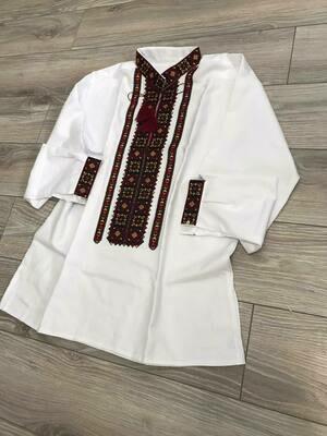 Вишиванка, чоловіча вишита сорочка (Арт. 02609)