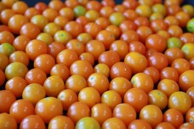 Tomates cerises jaunes bio 1 lb