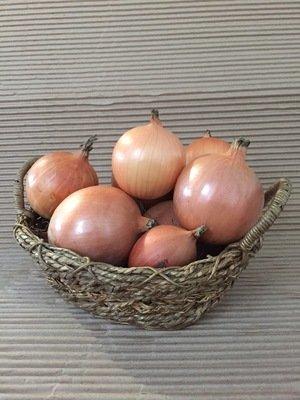 Oignon jaune 2 lbs