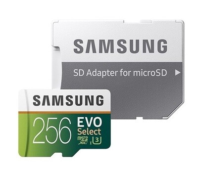 Samsung Tarjeta de memoria flash MicroSDXC EVO | Class10 | 256GB