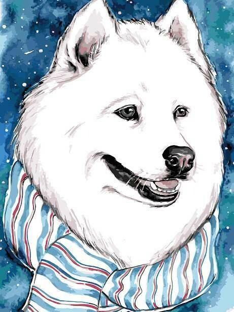 Картина по номерам (30х40см) Цветной ME1111 Белый друг