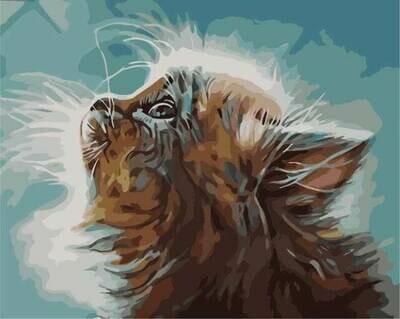 Картина по номерам (40х50см) Цветной MG2074 Котенок в мечтах